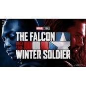The Falcon And The Winter Soldier (35)