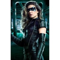 Juliana Harkavy Arrow Season 6 Jacket