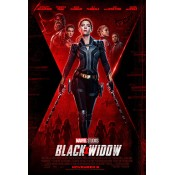 Black Widow Outfits (21)